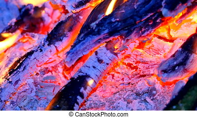 Burning hardwood in detail. Burning woods shiver in hot air and gentle flames  fluorescing.  White ash covers the burning pieces of wood.