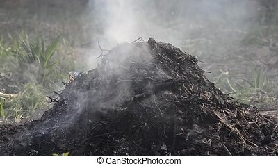 burning heap of an old leaves