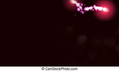 Burning sparks creating pink rose petal forming heart shape