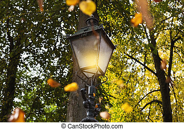 Burning Lamppost with falling leafs in the autumn, colorful golden, orange and yellow colors in a forest landscape closeup