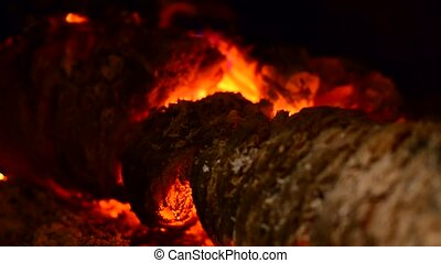Burning Logs in the Fireplace.