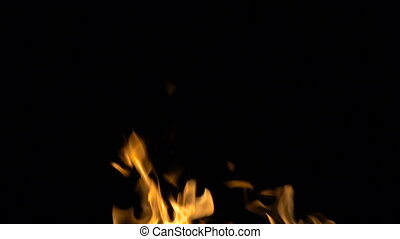 Burning orange flame on black background