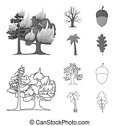 Burning tree, palm, acorn, dry tree. Forest set collection icons in outline, monochrome style bitmap symbol stock illustration web.
