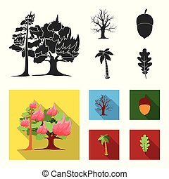 Burning tree, palm, acorn, dry tree.Forest set collection icons in black, flat style vector symbol stock illustration web.