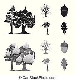 Burning tree, palm, acorn, dry tree.Forest set collection icons in black,monochrome style vector symbol stock illustration web.