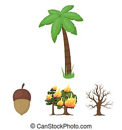 Burning tree, palm, acorn, dry tree.Forest set collection icons in cartoon style vector symbol stock illustration web.