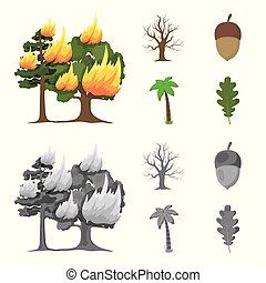 Burning tree, palm, acorn, dry tree.Forest set collection icons in cartoon,monochrome style vector symbol stock illustration web.