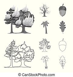 Burning tree, palm, acorn, dry tree.Forest set collection icons in outline,monochrome style vector symbol stock illustration web.