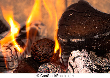 Burning Wood and Cones