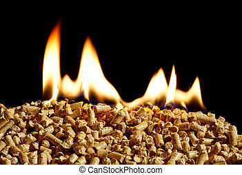 burning wood chip pellets a renewable source of energy...