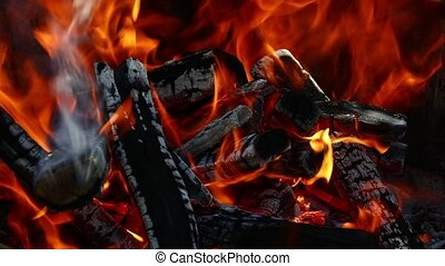 Burning wood fire flame spire in bonfire fireplace