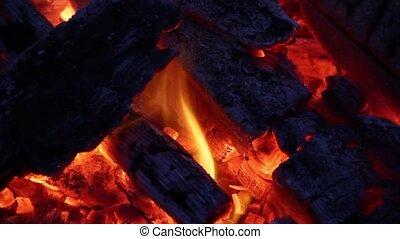 Burning Wood Fire Loop