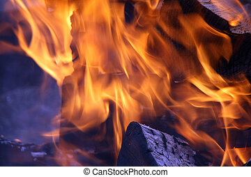 Burning wood in fire flame