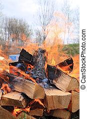 burninging firewood in campfires