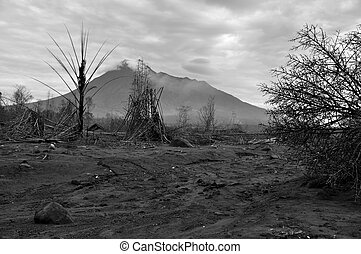Burnt Area from Mt. Merapi Erupted