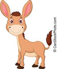 burro, caricatura, lindo