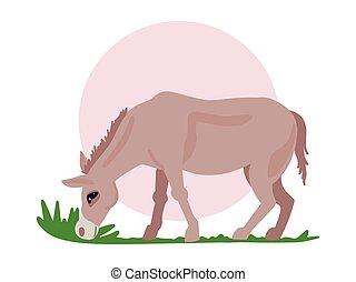 burro, comida, campo, grass., print., vector, apaceieta, ...