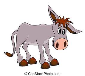 burro, fundo, jovem, charming, branca