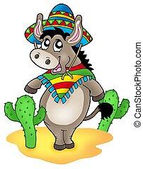 burro, mexicano, cactus