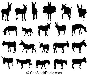 burros, siluetas