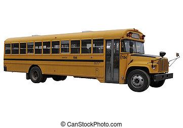 bus, school