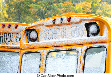 Bus Windows with Snow - Autumn is being replaced by winter...
