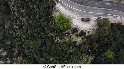 busch, geparkt, brummen, grün, berghang, bewaldet, hell,...