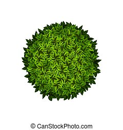 busch, grün, runder