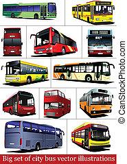 buses., 観光客, セット, coa, 都市, 大きい