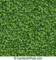 bush., 緑, seamless, texture.