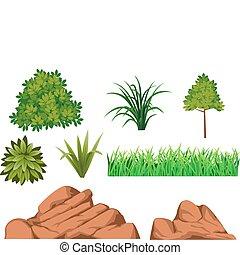 Bush and rock - bush and rock