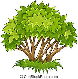 bush, com, verde sai