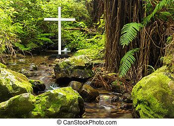 bush, crucifixos, nativo