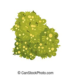 Bush in the shape of a heart. Vector illustration on white background.