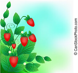 Bush of a ripe red strawberry on a green background