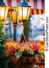 Bush Of Colorful Calluna Plants In Hanging Pots Under Decorative