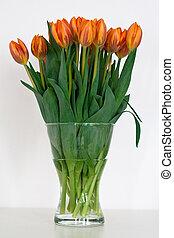 Bush of tulips