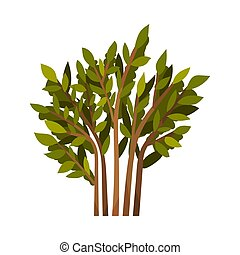 Bush with brown branches. Vector illustration on a white background.