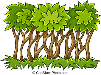 Bush with green leaves on grass