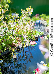 bush with white flowers on  background  pond in the garden