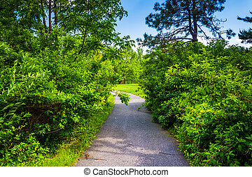 Bushes along a path at Cylburn Arboretum in Baltimore, Maryland.