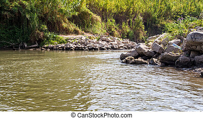 Bushes along the banks, Jordan River - Plants and bushes...
