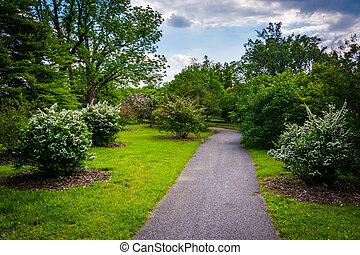 Bushes and trees along a walkway at Cylburn Arboretum, Baltimore, Maryland