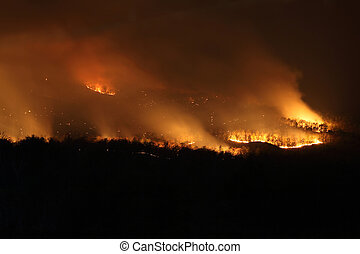 Bushfire Wildfire at night