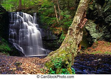 bushkill, cascada