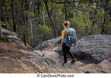 Bushwalking Blue Mountains