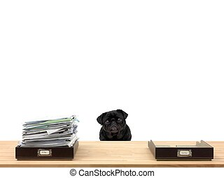 Business Admin - In and out office trays in an office ...