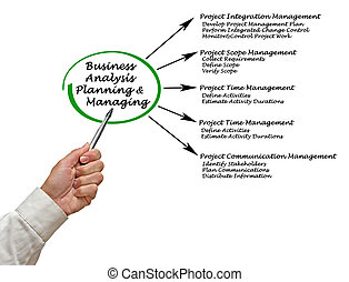 Business Analysis Planning and Managing