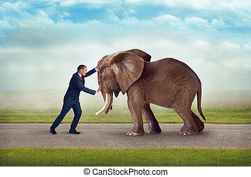 business challenge elephant obstacle - business challenge...
