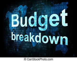 Business concept: pixelated words Budget breakdown on digital screen, 3d render